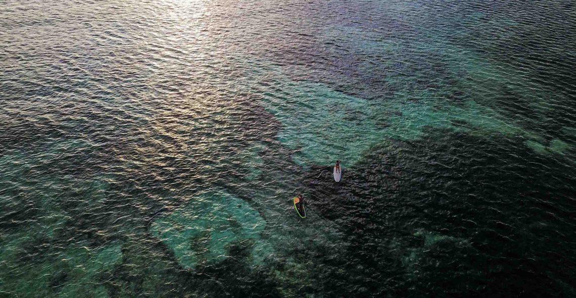 paddle seed resort