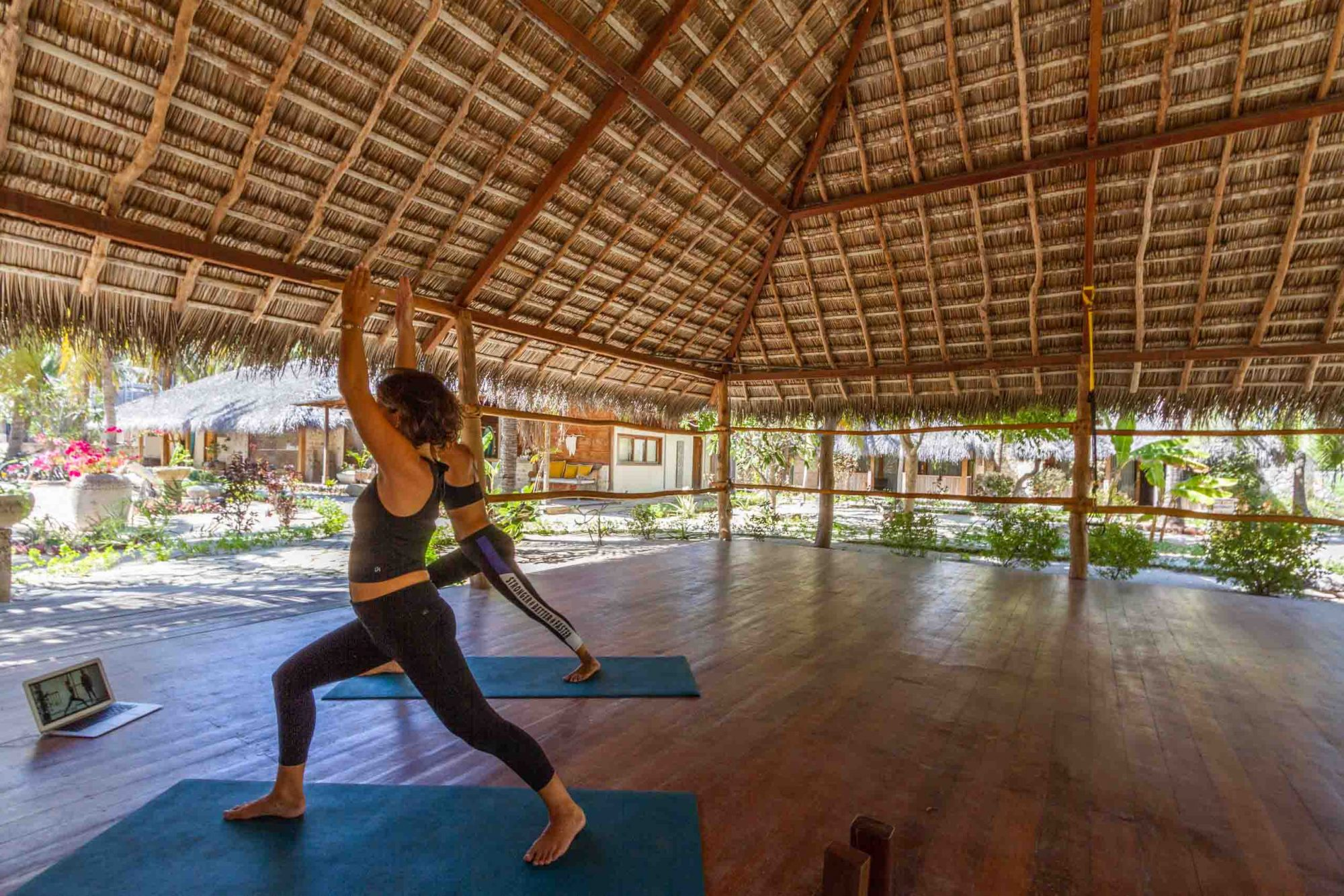 yoga activites rote island