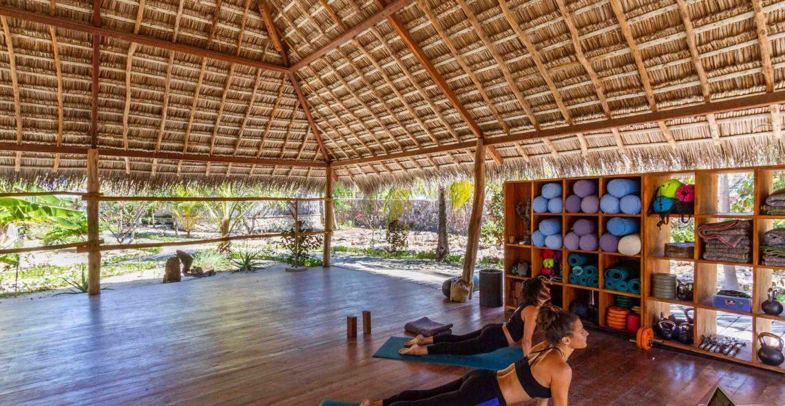 Yoga seed resort
